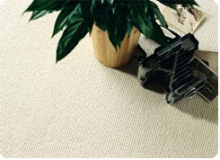 Ulster Carpets Supplier London